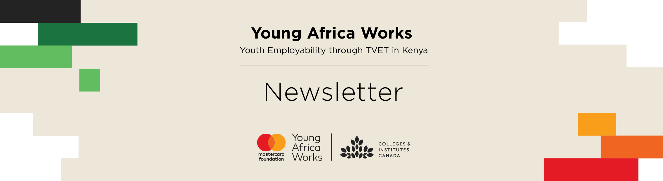 Young Africa Works Newsletter